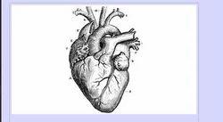 Heart Treatment Service