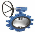Lug Type Butterfly Valve - CS - Gear Operated
