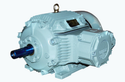 Motor For Hazardous Area Lv