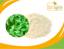 Bulk Pure Organic Stevia Extract