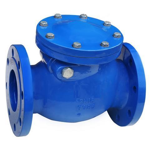 Image result for Cast Iron Check Valves