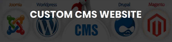 Custom CMS Website