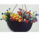 Flower Hanging Coir Pot