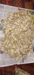 Dry Oester Mushroom