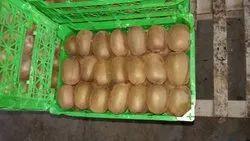 Kiwi, Packaging Size: 10 kg