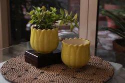 Green Ceramic Flower Planter