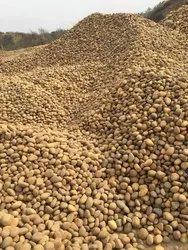 Smooth Arham Craft Pebbles for Landscaping