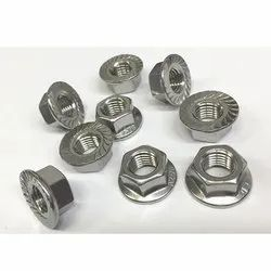 Stainless Steel 310 Nuts