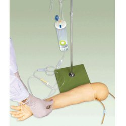 Multifunctional Child IV Traning Arm Model