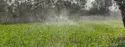 Agricultural Rain Pipes