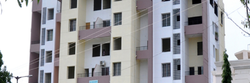 1BHK Apartment Construction Service