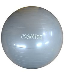 Cockatoo Ball 85 cm Gym Ball