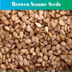PJ Natural Brown Sesame Seed, Packaging Size: 25 Kg Or 50 Kg