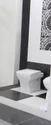 Designer Toilet Seat