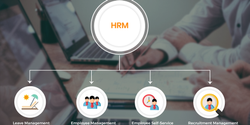 Microdot Software HRM & Accounts Solution Online