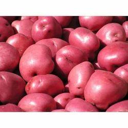Farm Fresh Red Potatoes