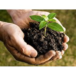 Compost Based Organic Fertilizer