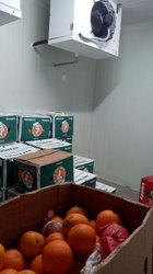 Orange Cold Storage Room
