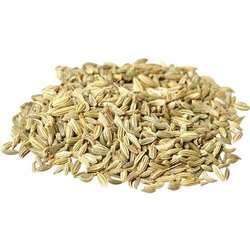 Green Fennel Seed, Packaging Type: Packet, Packaging Size: 1 Kg