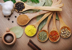 Spices and Condiments Testing Analysis Laboratory Service