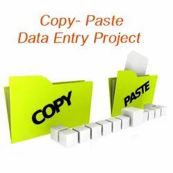 Copy & Paste Data Entry Work