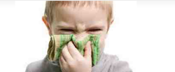 Treatment Of Allergy
