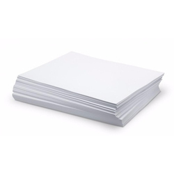 LC Laser Synthetic Teslin Sheet (12x18 Size)