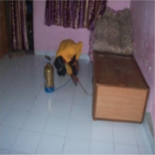 Bed Bug Control Service In Mumbai Borivali E By Be Gon Pest