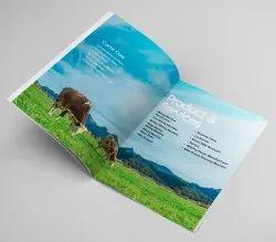 E Brochure Design Services