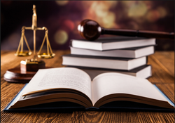 Civil Laws Services