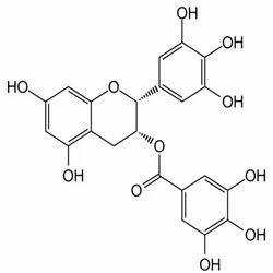 EGCG Epigallocatechin Gallate