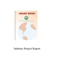 Industry Project Report