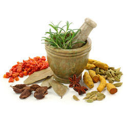 Herbal Medicine Franchise for Bihar