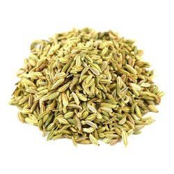 Angel 12 Months Dried Fennel Seed, Gunny Bag, Packaging Size: 25 Kg