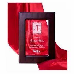 MG-934 Promotional Award
