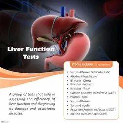 Liver Function Test (LFT)