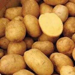 Non Organic Potato, Packaging Size: 50 Kg, Packaging Type: Sack Bag