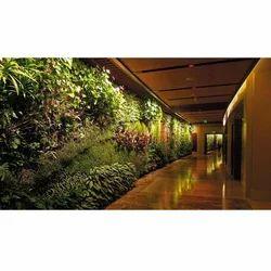 Vertical Garden Landscape Designing Services