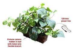 Spy Camera in Flower Pot