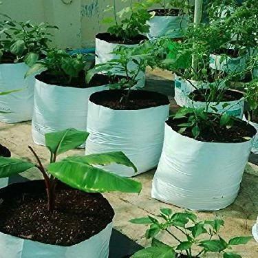 Poly Grow Bags