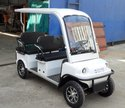 Golf Cart Rental Services for Event