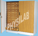 Physilab Wood Insect Showcase Cabinet For Labaoratory