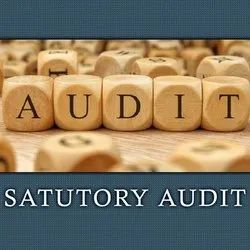 Consulting Firm Statutory Audit Service