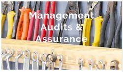 1-5 Days Smart Audit Program Service, Client Location