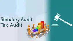 Statutory Audit In Lucknow