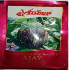 Ankur Brinjal Seed Ajay, Pack Size: 10 Gm