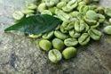 Green Coffee 50% Extract