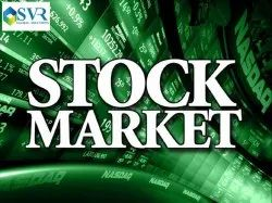 Stock Market Website Design And Development