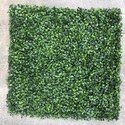 Artificial Vertical Garden Boxwood