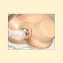 Midwifery Training Simulator Model